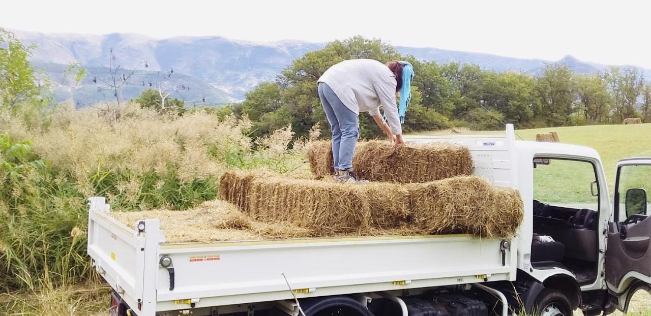 loading straw