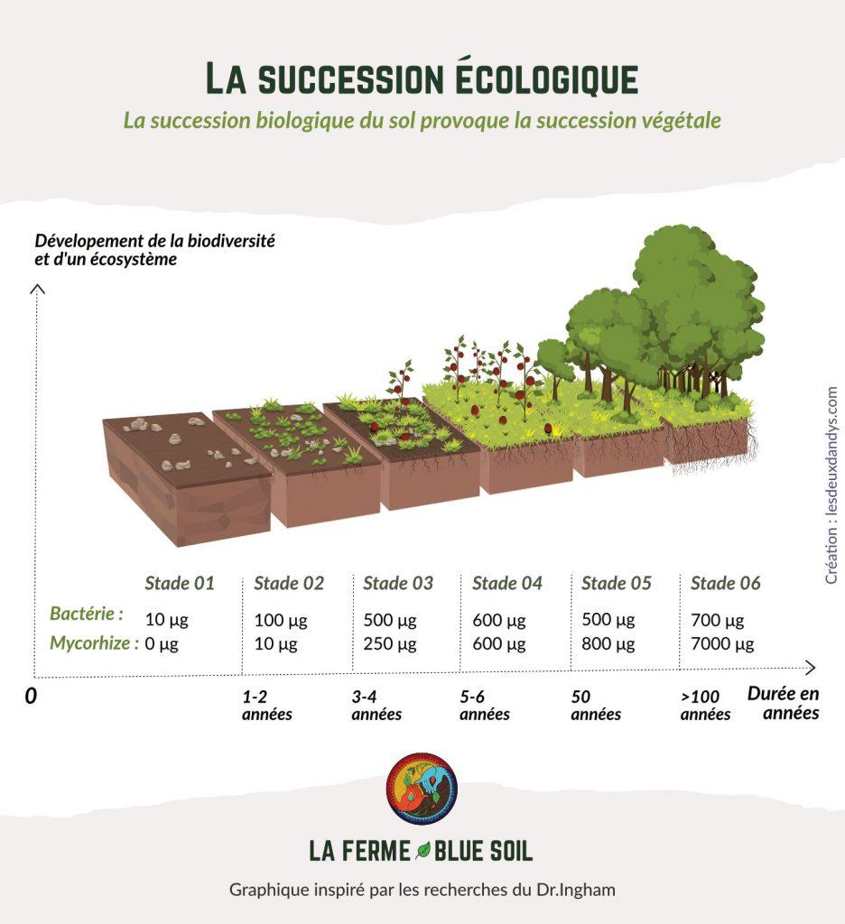 Succession écologique